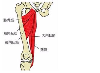 腰痛,改善,予防,原因,ストレッチ5